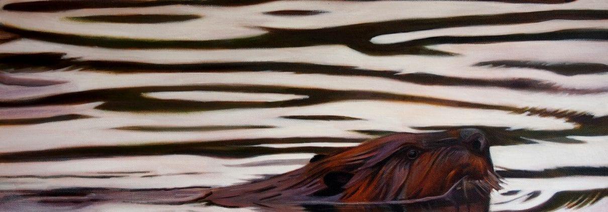 Beaver - Melanie MacDonald
