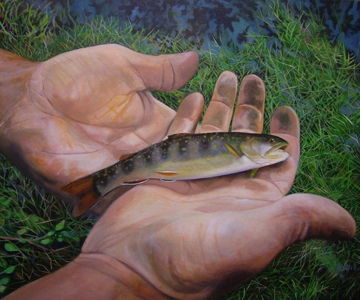 Brook Trout Fishing - Melanie MacDonald