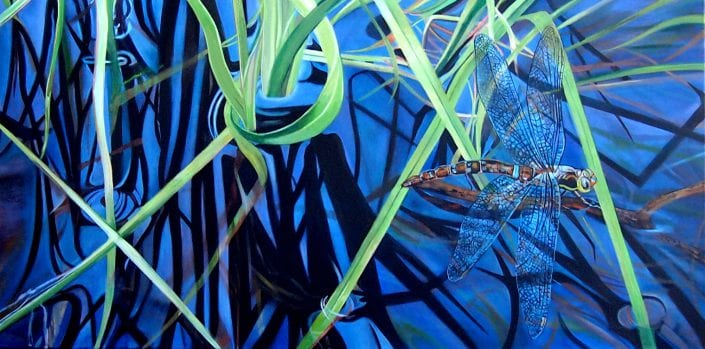 Dragon Fly on the Water - Melanie MacDonald
