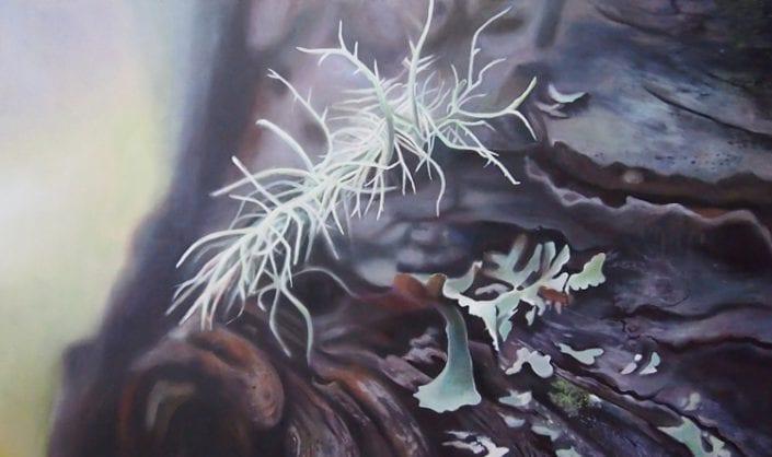 Lichen I - Melanie MacDonald