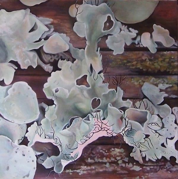 Lichen II, Apalachicola, Florida - Melanie MacDonald