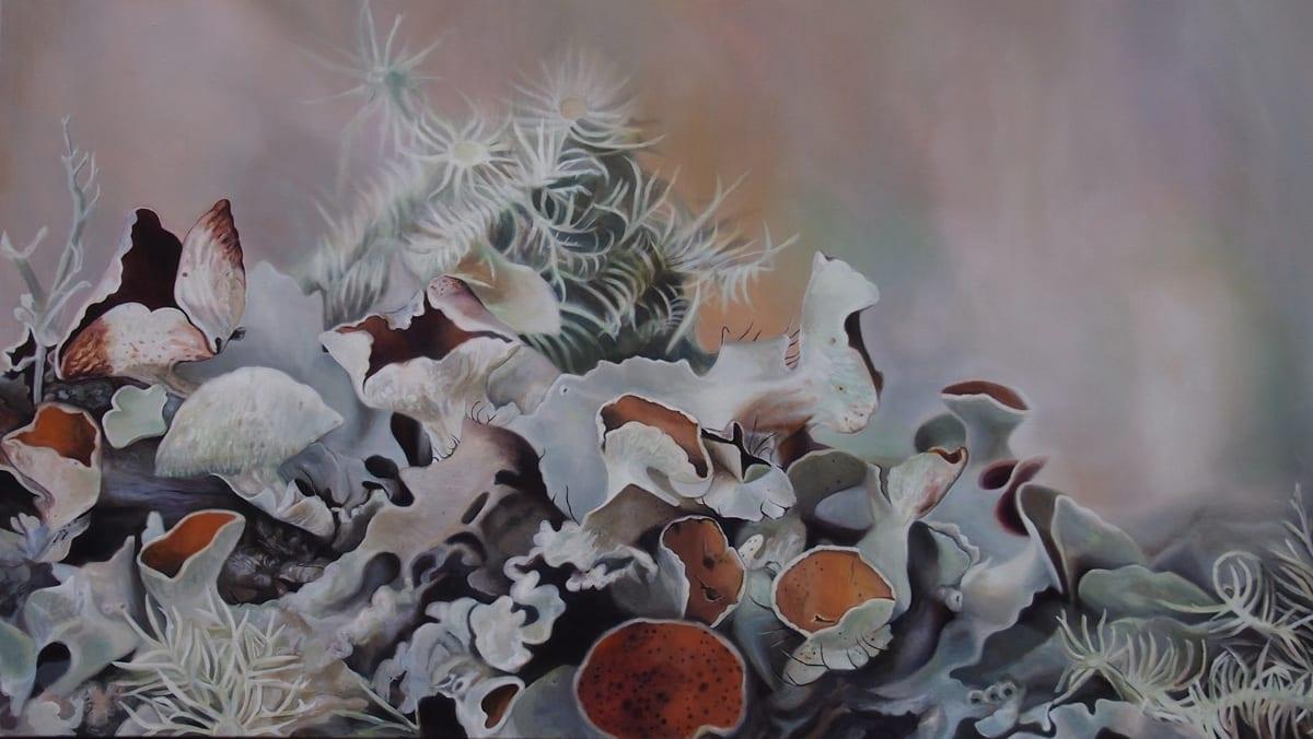 Lichen IV, Apalachicola, Florida - Melanie MacDonald