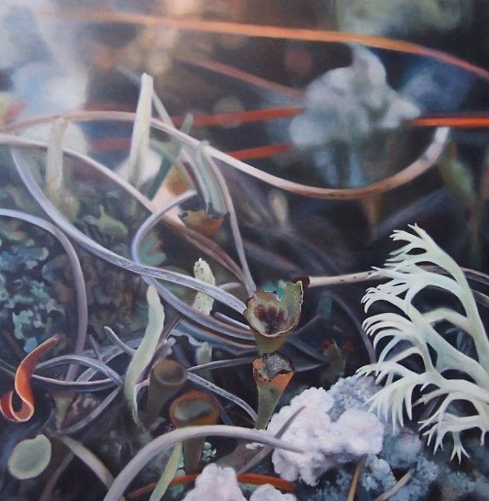 Lichen IV - Melanie MacDonald