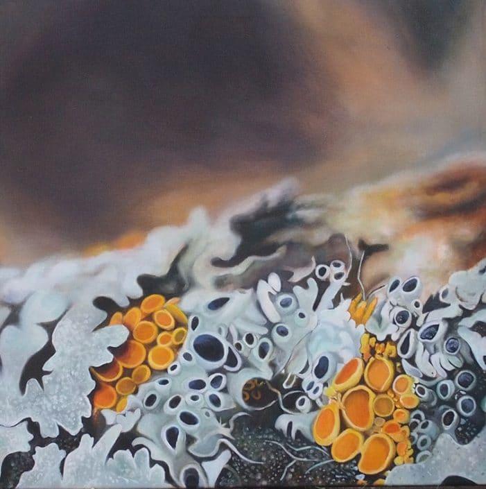 Pin Cushion Starburst Lichen - Melanie MacDOnald