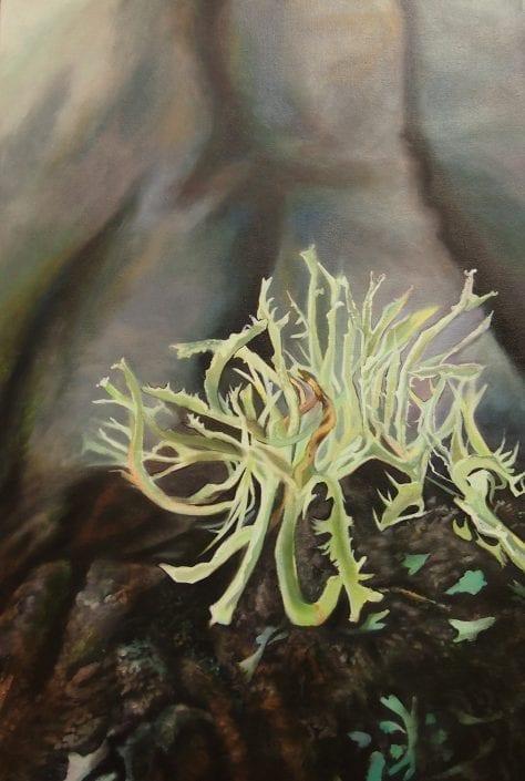 Bush Lichen - Melanie MacDonald