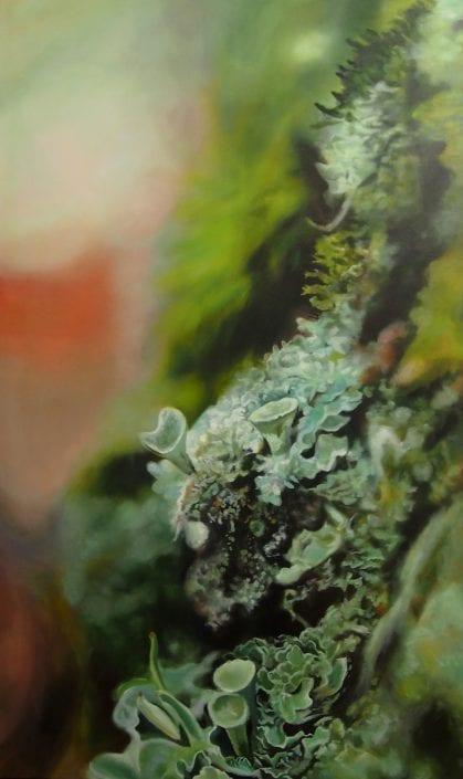 Trumpet Lichen and Moss - Melanie MacDonald